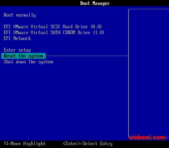 VMware Workstation - Boot Manager